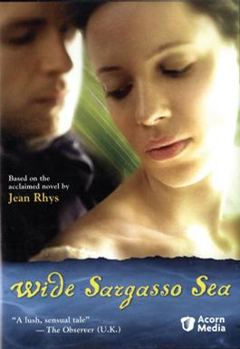 藻海无边 Wide Sargasso Sea